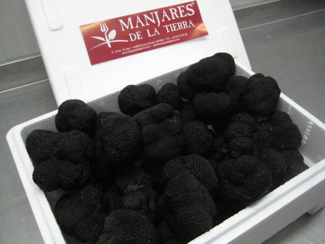 Are there truffles in Spain?
