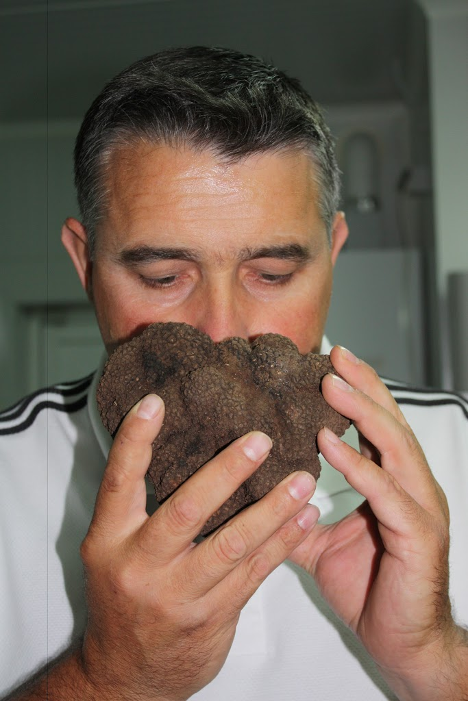 Why we like so much the melanosporum truffle?