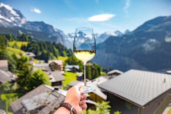 Los mejores vinos de España que DEBES conocer (tinto, blanco y rosado)